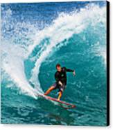 Alex Gray Carving Canvas Print by Paul Topp