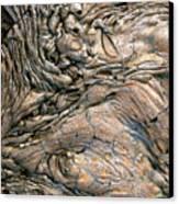 Alien Landscape Canvas Print by Corinne Rhode