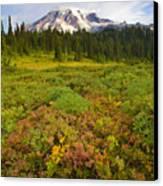 Alpine Meadows Canvas Print by Mike  Dawson