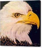 American Bald Eagle Canvas Print by Dy Witt