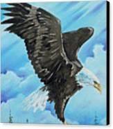 American Flight Canvas Print by Joseph Palotas