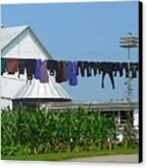 Amish Laundry Canvas Print by Lori Seaman