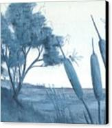 Among The Cattails... No. Four Canvas Print by Robert Meszaros