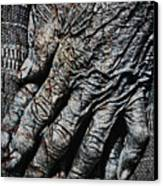 Ancient Hands Canvas Print by Skip Nall