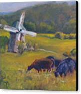 Angus On The Ridge Canvas Print by B Rossitto