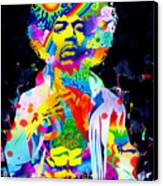 Are You Experienced? Canvas Print by Callie Fink
