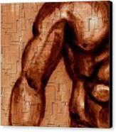 Arm And Torso Canvas Print by Joseph Ferguson
