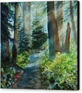 Around The Path Canvas Print by Kerri Ligatich