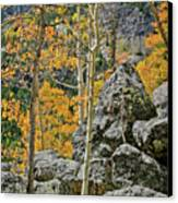 Aspens Rocks And Longs Peak Canvas Print by Brent Parks