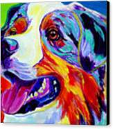 Aussie Canvas Print by Alicia VanNoy Call