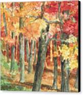 Autumn Canvas Print by Barbel Amos