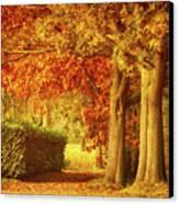 Autumn Colors Canvas Print by Wim Lanclus