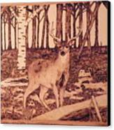 Autumn Deer Canvas Print by Andrew Siecienski