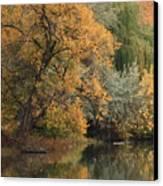 Autumn Riverbank Canvas Print by Carol Groenen