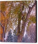 Autumn Snow Park Bench   Canvas Print by James BO  Insogna