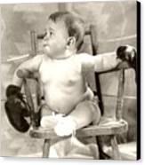 Baby Boxer Canvas Print by Daniel Napoli