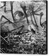 Back Alley Graffiti  Canvas Print by Dustin K Ryan