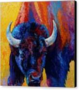 Back Off - Bison Canvas Print by Marion Rose