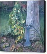 Backyard Canvas Print by Paula Pagliughi