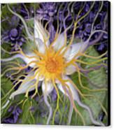 Bali Dream Flower Canvas Print by Christopher Beikmann