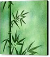 Bamboo Canvas Print by Svetlana Sewell