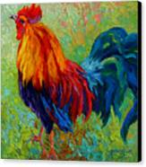 Band Of Gold - Rooster Canvas Print by Marion Rose
