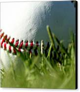 Baseball In Grass Canvas Print by Chris Brannen