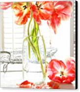 Beautiful Tulips In Old Milk Bottle  Canvas Print by Sandra Cunningham