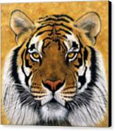 Bengali II Canvas Print by Lawrence Supino