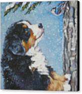 bernese Mountain Dog puppy and nuthatch Canvas Print by Lee Ann Shepard