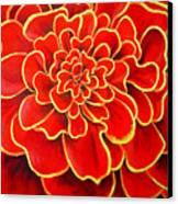 Big Red Flower Canvas Print by Geoff Greene