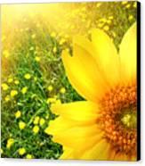 Big Yellow Sunflower  Canvas Print by Sandra Cunningham