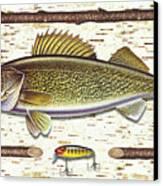 Birch Walleye Canvas Print by JQ Licensing