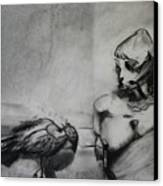 Bird Drama Canvas Print by Brad Wilson
