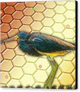Bird Ponders The Disappearing Bees And Several Biological Markers Left In The Hive Canvas Print by Wendy J St Christopher