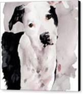 Black And White Pit Canvas Print by Debra Jones
