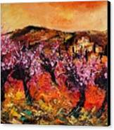 Blooming Cherry Trees Canvas Print by Pol Ledent