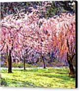 Blossom Fantasy Canvas Print by David Lloyd Glover