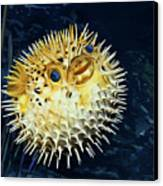 Blowfish Canvas Print by Thanh Thuy Nguyen
