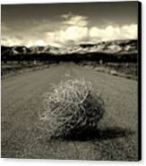 Blowin In The Wind.. Canvas Print by Al  Swasey