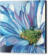Blue Canvas Print by Angela Armano