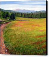 Blueberry Field 09 Canvas Print by Laura Tasheiko