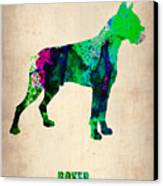 Boxer Poster Canvas Print by Naxart Studio