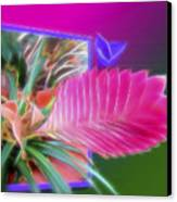 Bursting Forth In Bloom Canvas Print by Sue Melvin