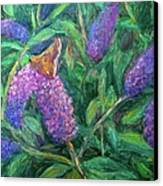 Butterfly View Canvas Print by Kendall Kessler