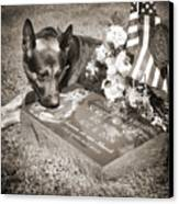 Buy A Print. Show Your Support For Reading K9 Police.  Willow Street Pictures.  Canvas Print by Darren Modricker