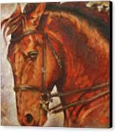 Caballo I Canvas Print by Jose Espinoza