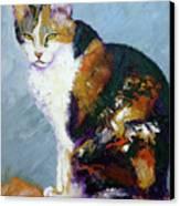 Calico Buddy Canvas Print by Susan A Becker
