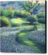 California Spring Canvas Print by Karin  Leonard
