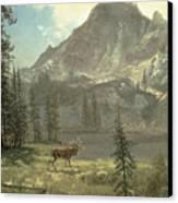 Call Of The Wild Canvas Print by Albert Bierstadt